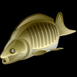 Плавающие бойлы и любые другие товары для рыбалки