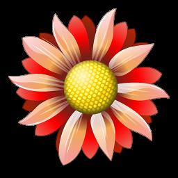 Оперативная доставка цветов в Оренбурге – яркий подарок на все времена